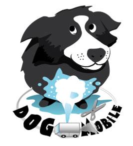 dog-mobile-toilettage-belgique-insolite