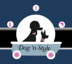 dog-n-style-toilettage-belgique-insolite